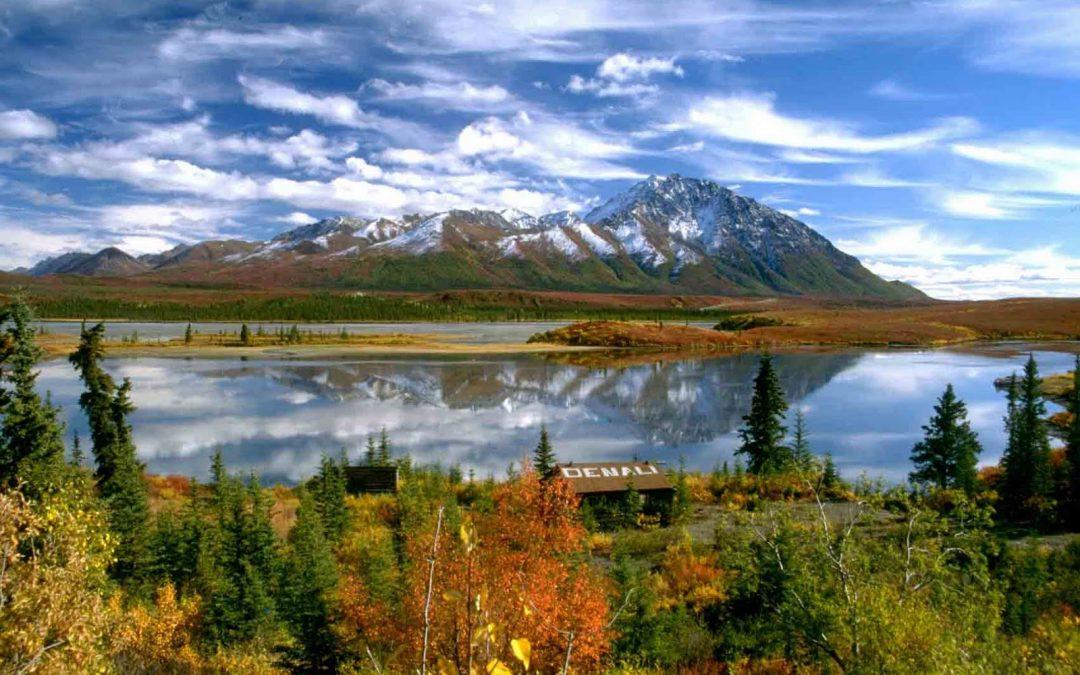Alaskan Cruise 2010